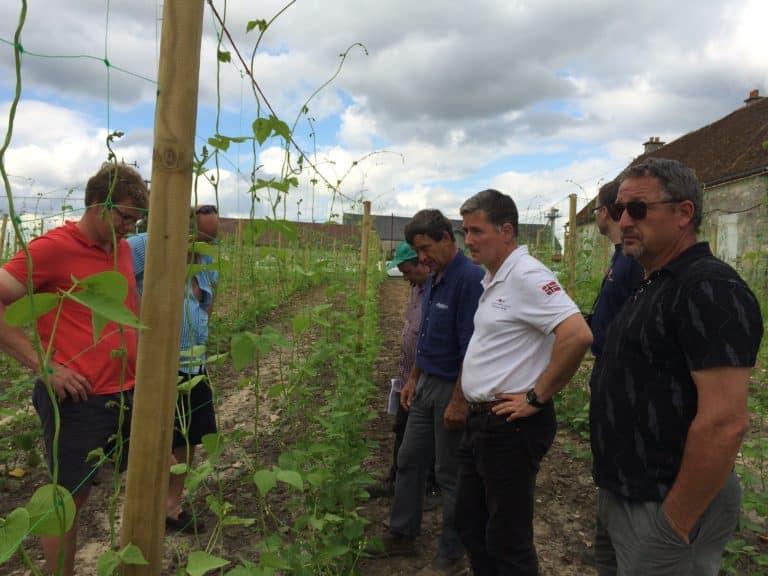 adhérents de la coopérative du haricot de Soissons