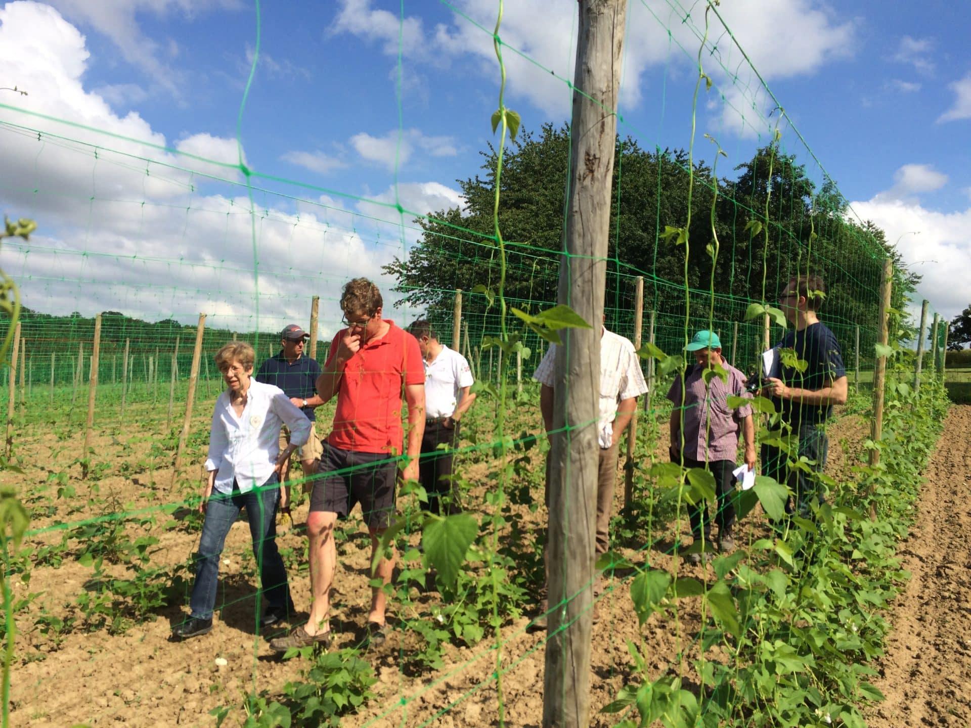 les adherents de la coopérative du Haricot de Soissons